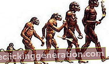 Definition af antropologi