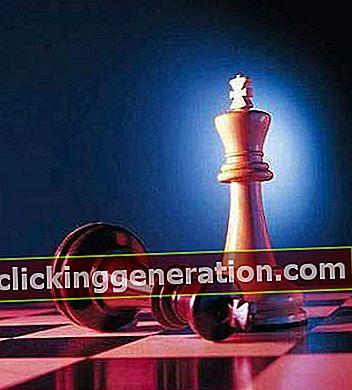 Definition af skak