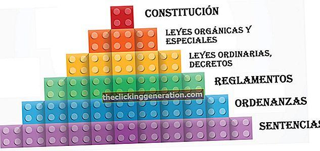 Definition af Kelsens pyramide