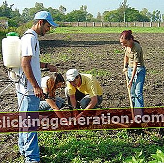 Definisjon av landbruk
