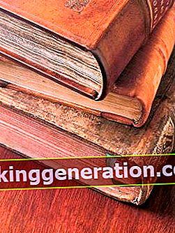 Definisjon av Book