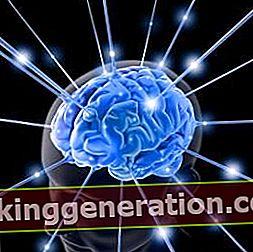Definisjon av intelligens