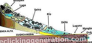Definícia Cuenca