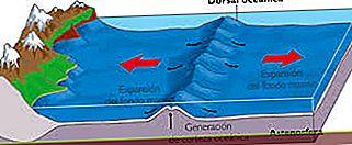 Definícia Ocean Ridge