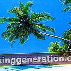 Definícia Karibiku