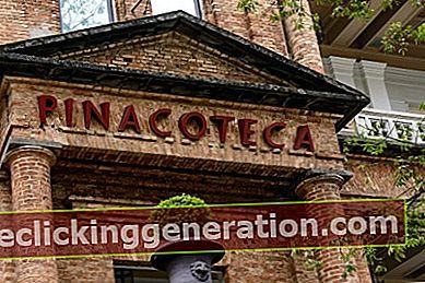 Definition af Pinacoteca