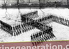Definition af nazisme