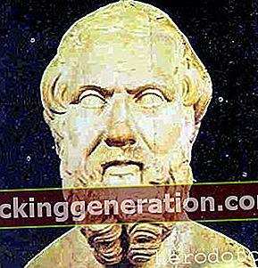 Definition af historiker