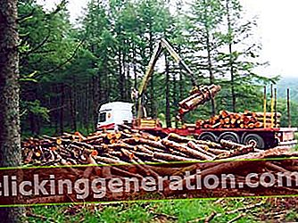 Ορισμός της εκμετάλλευσης των δασών