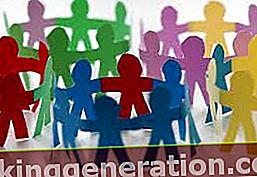 Definition af social bevægelse